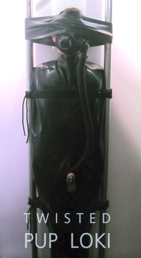 vertical-sleepsack-bondage